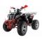 Квадроцикл WELS 200cc EVO X