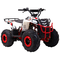 Квадроцикл WELS Thunder EVO M ATV110